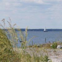 Sailboat at the Bay